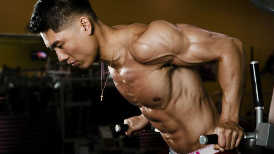 Can I Build Muscle Using Only Calisthenics (Bodyweight Exercises)?