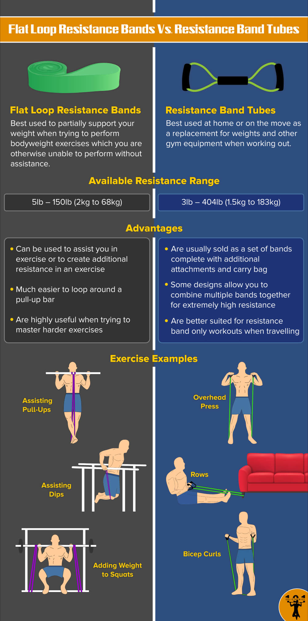 Flat Loop Resistance Bands Vs. Resistance Band Tubes - Calisthenics 101 Infographic