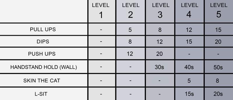 Complete Calisthenics Level 1-5 - Requirements